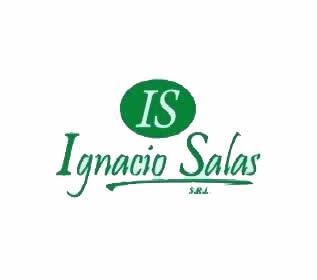 Ignacio Salas - Clientes Decaral S.R.L